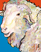 White Sheep Prints - Rainbow Ram Print by Pat Saunders-White