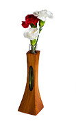 Mahogany Red Photo Prints - Red and white spray carnations in teak vase Print by Steve Heap