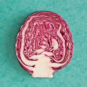 Red Cabbage Print by Tom Gowanlock