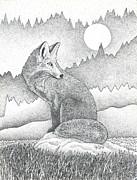 Brian Gilna - Red Fox