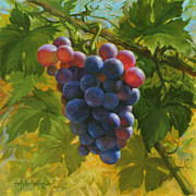Arbor Paintings - Red Grapes by David Henderson