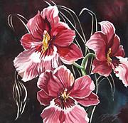 Alfred Ng - red oncidium orchid