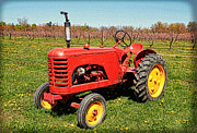 Les Palenik - Red Tractor In The O...