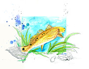 Moran Mixed Media Prints - Redfish Print by Amber M  Moran