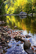 Williams River Scenic Backway Prints - Reflections of Fall Print by Thomas R Fletcher