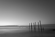 Jerseyshore Photo Originals - Remaining Pilings by Michael Ver Sprill