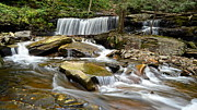 Rushing Prints - Ricketts Glen Delaware Falls Print by Robert Harmon