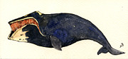 Ocean Mammals Originals - Right whale by Juan  Bosco