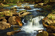 Waterfall Photo Prints - River rapids Print by Elena Elisseeva
