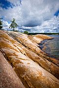 Beautiful Landscapes Posters - Rocky shore of Georgian Bay Poster by Elena Elisseeva