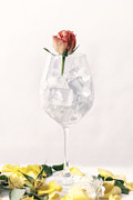 Wine Glass Posters - Rose On The Rocks Poster by Joana Kruse