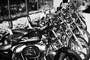 Harley Davidson Framed Prints - Row Of Harley Davidson Motorbikes Including Sportster Outside Motorcycle Dealership Orlando Florida  Framed Print by Joe Fox
