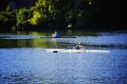 Rowing In Philadelphia Print by Bill Cannon
