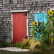 Mermaids Photos - Rustic Cape Cod by Bill  Wakeley