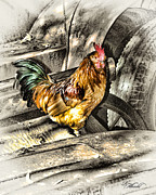 Junkyard Framed Prints - Rusty The Junkyard Rooster Framed Print by Robert Albrecht