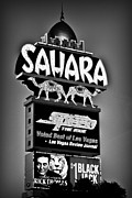 SAHARA Art - Sahara Sign by James Marvin Phelps