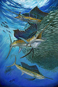 White Marlin Painting Posters - Sailfish With A Ball Of Bait Poster by Terry  Fox