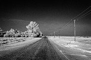 Winters Framed Prints - salt and grit covered rural small road in Forget Saskatchewan Canada Framed Print by Joe Fox