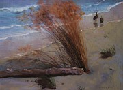 Sea Birds Pastels - Sandy beach by Howard Scherer