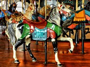 Equine Photo Posters - Santa Monica Carousel 003 Poster by Lance Vaughn