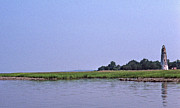 Ga Photos - Sapelo Island Lighthouse by Skip Willits