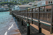 Sausalito Prints - Sausalito Boardwalk Print by Dan Shehan Photography