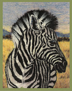 Greeting Cards Tapestries - Textiles Prints - Savannah Zebra Print by Dena Kotka