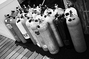 Scuba Photos - Scuba Air Tanks Lined Up On Jetty To Be Filled In Harbour Key West Florida Usa by Joe Fox