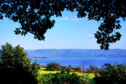 Sermon On The Mount Prints - Sea of Galilee from Mount of the Beatitudes Print by Thomas R Fletcher