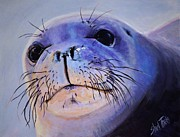 Up Painting Prints - Seal Print by Shirl Theis