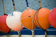 Buoys Photos - Seaside Colors by Frank Tschakert