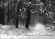 Snowy Holiday Card Posters - Seasons Greetings Poster by Lori Deiter