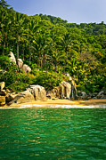Jungle Photos - Secluded Beach  by Elena Elisseeva