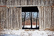 Cheryl Cencich - See Through Barn