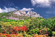 Razorback Photos - Seneca Rocks by Mary Almond