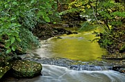 Green Foliage Prints - Serene Stream Print by Robert Harmon