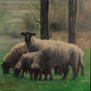 John  Reynolds - Sheep Family
