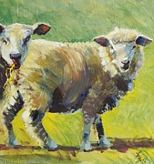 Fit Originals - Sheep Painting by Mike Jory