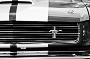 Cobra Photo Prints - Shelby Cobra GT 350 Grille Emblem Print by Jill Reger