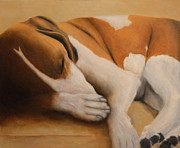 Joan Glinert - Sleeping Dog