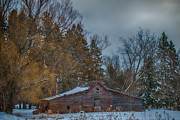 Small Barn Print by Paul Freidlund