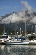 Small Boat Prints - Small Boat Harbor Seward Alaska Print by Gary Langley