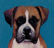 Boxer Painting Prints - Small the Boxer  Print by Francis Ashley
