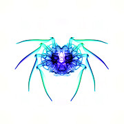 Trippy Framed Prints - Smoke Spider 2 Framed Print by Steve Purnell