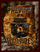 Mascot Metal Prints - Smokey The Bear - Only You Can Prevent Wild Fires Metal Print by John Stephens