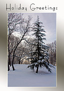 Carolyn Stagger Cokley Acrylic Prints - Snow Day Acrylic Print by Carolyn Stagger Cokley