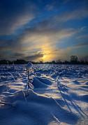 Snow Way Print by Phil Koch