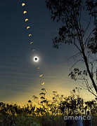 Observer Photo Prints - Solar Eclipse Composite, Queensland Print by Philip Hart
