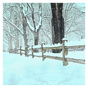 Split Rail Fence Photo Metal Prints - Split Rail Blues Metal Print by John Stephens