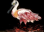 Spoonbill Paintings - Spoonlight by Lil Taylor